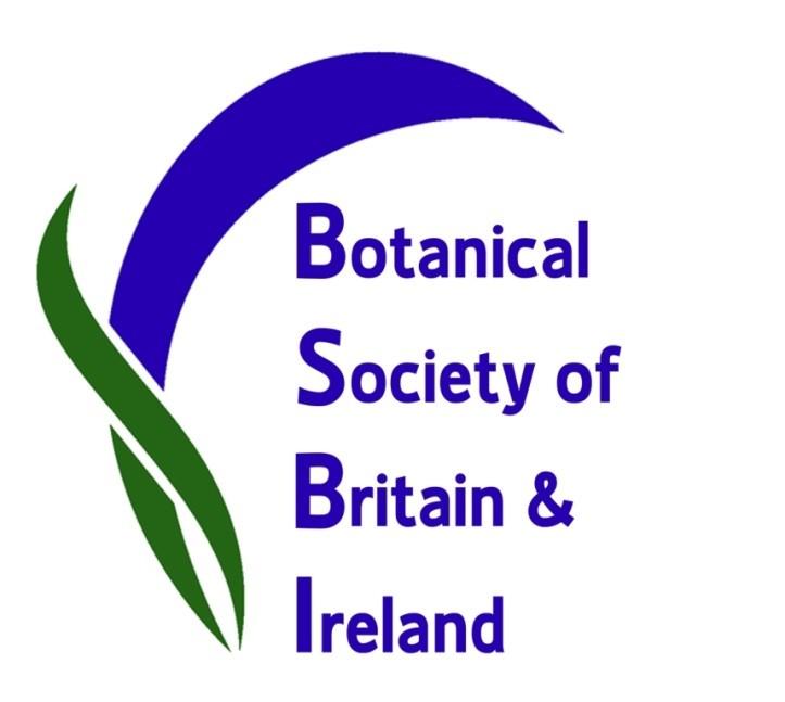 BSBI logo
